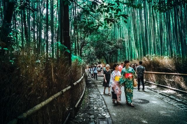 japon baños de bosque