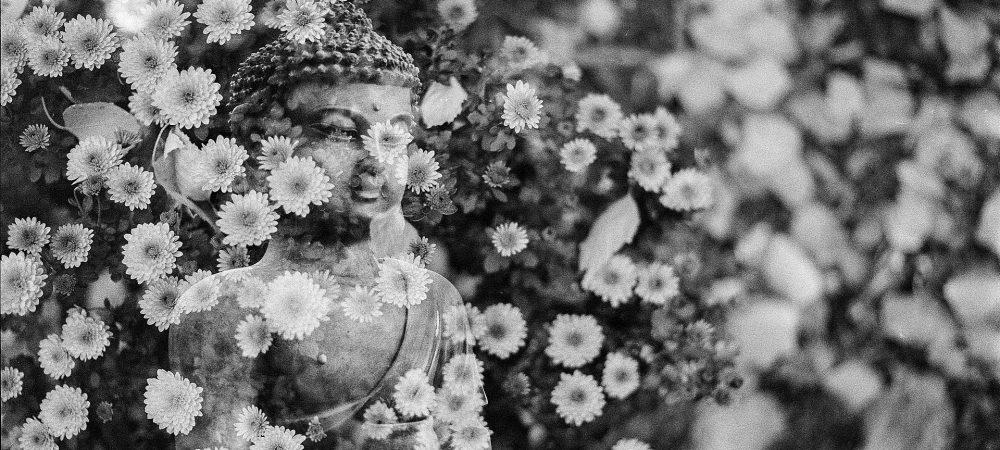 buddha-1815612_1920