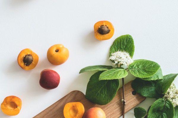 frutos guia naturaleza